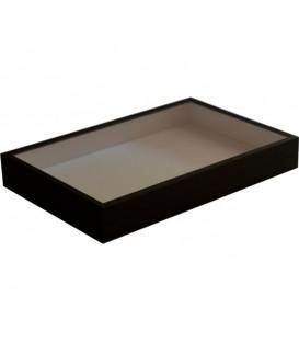 Boîte entomo 26 x 39 x 5,5 cm