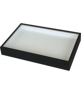 Boîte entomologique liseré doré